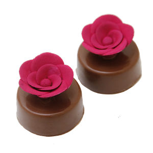 Rosa de Gianduia